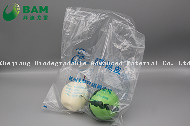 Sustainable Packing Biodegradable Custom Color Printed Plastic Supermarket Shopping Food Packaging Bags Food Pouches for Fruit /Vegetable/Seafood