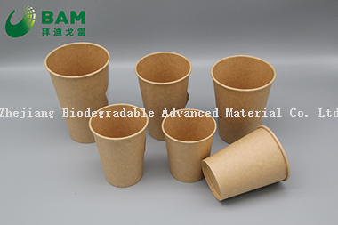 Biodegradable Convenient Compostable Disposable Food Containers Soup Bowls Hot Soup Plastic Paper Cup for Coffee Drink Juice