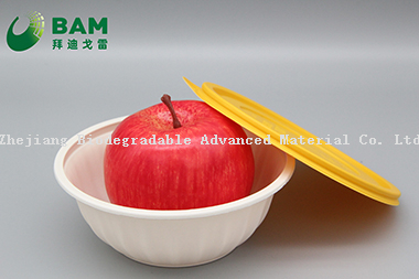 Fully Biodegradable Food Grade Compostable Sugarcane Corn Starch Takeaway Soup Fruits Rice Containers for Canteen Restaurant