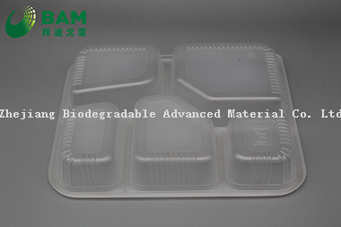 Fully Biodegradable 5 Compartment Compostable Sugarcane Plant Fiber Canteen Takeaway Food Containers for Fast-Food